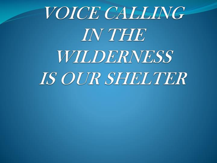 voice calling in the wilderness is our shelter n.
