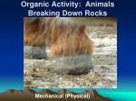 organic activity animals breaking down rocks