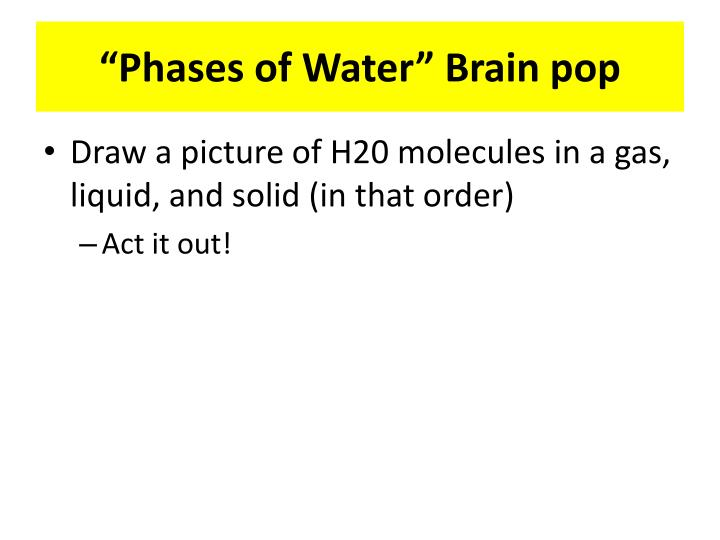 phases of w ater brain pop n.