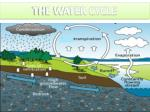 the water cycle9