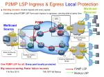 p2mp lsp ingress egress local protection