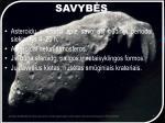 savyb s