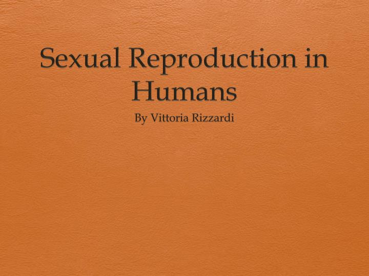 sexual reproduction in humans n.