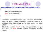 fonksiyon format