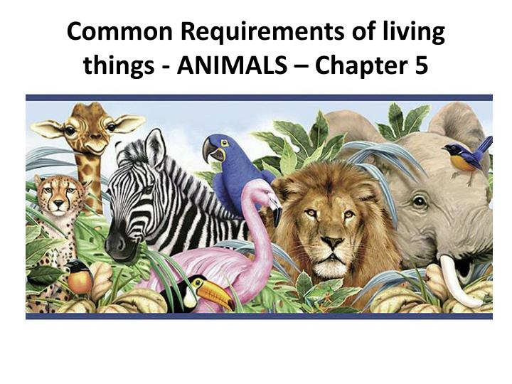 common requirements of living things animals chapter 5 n.