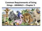 common requirements of living things animals chapter 5