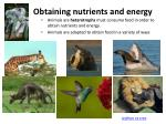 obtaining nutrients and energy