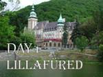 day 1 lillaf red