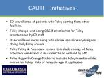 cauti initiatives