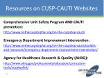 resources on cusp cauti websites