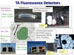 ta fluorescence detectors