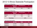 2012 13 illinois statewide participation
