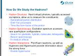 how do we study the hadrons