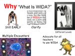 why what is wida