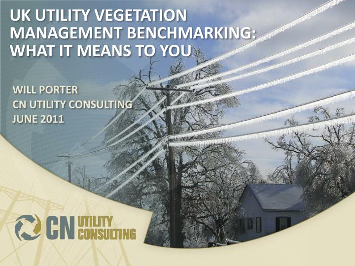 uk utility vegetation management benchmarking what it means to you n.