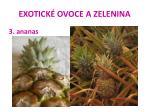 exotick ovoce a zelenina15