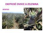 exotick ovoce a zelenina17