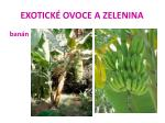 exotick ovoce a zelenina26