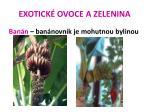 exotick ovoce a zelenina28
