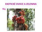 exotick ovoce a zelenina35