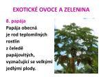 exotick ovoce a zelenina39