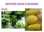 exotick ovoce a zelenina41