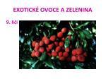 exotick ovoce a zelenina43
