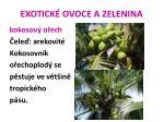 exotick ovoce a zelenina8