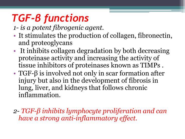 TGF-β functions
