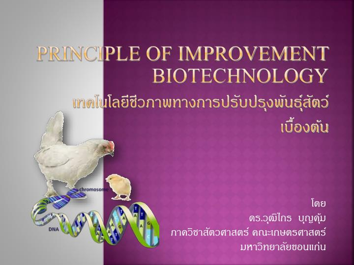 principle of improvement biotechnology n.