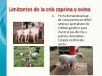 limitantes de la cr a caprina y ovina