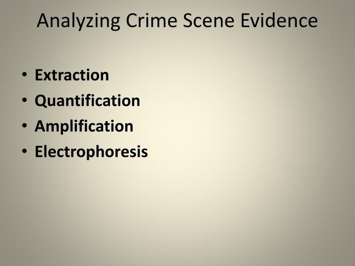 Analyzing Crime Scene Evidence