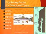 combining forms for directional terms
