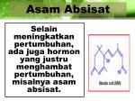 asam absisat1