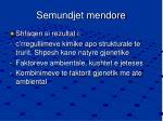 semundjet mendore1
