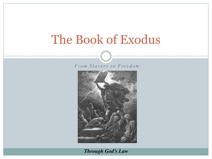 the book of exodus n.