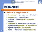 whodas 2 04