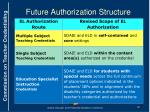 future authorization structure1