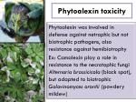 phytoalexin toxicity