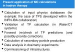 present application of mc calculations in hadron therapy