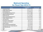 medicaid spending for fiscal year 2012 13