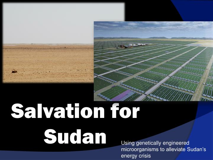 salvation for sudan n.