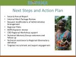 next steps and action plan