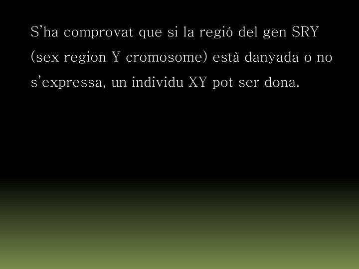 S'ha comprovat que si la regió del gen SRY (