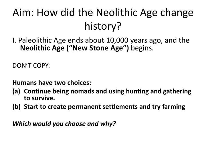 aim how did the neolithic age change history n.