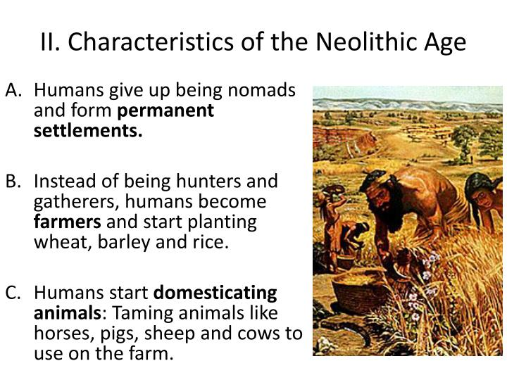 characteristics of neolithic age