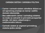 carinski sistem i carinska politika