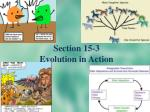 section 15 3 evolution in action