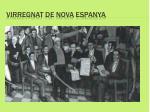 virregnat de nova espanya