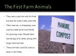 the first farm animals2